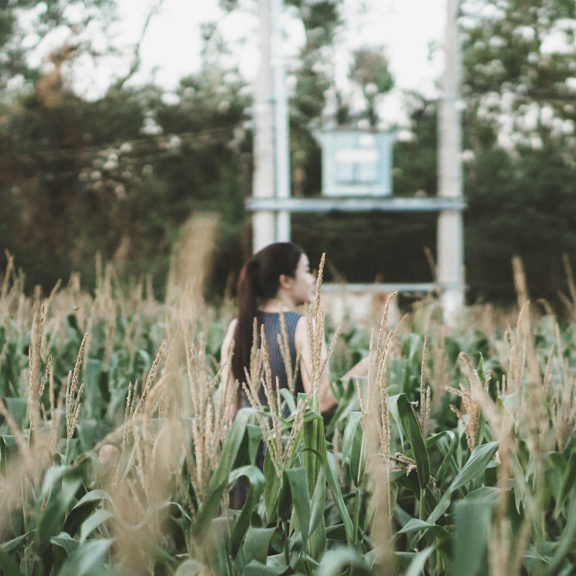 Woman-in-Cornfield